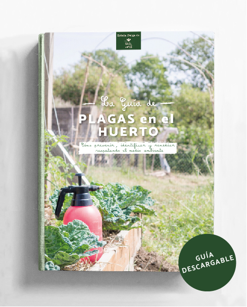 La guía de plagas en el huerto